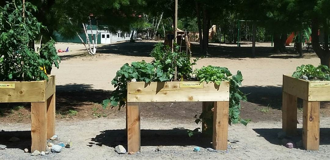 New community garden for kids